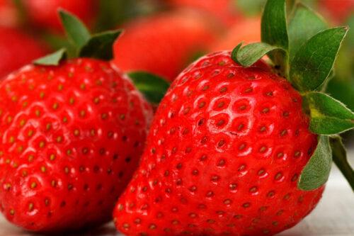 fraisese